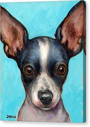 Chihuahua Puppy With Big Ears Canvas Print by Dottie Dracos