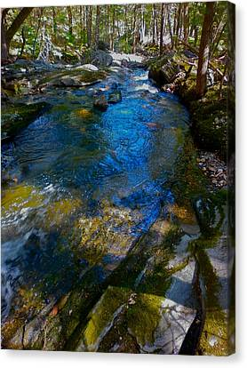 Childs Brook Wz 26 Canvas Print by George Ramos