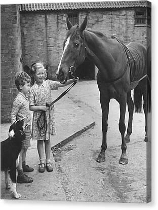 Child's Horse Canvas Print by Raymond Kleboe