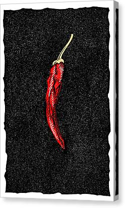 Chilli Pepper, Woodcut Canvas Print by Gary Hincks