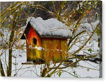Chilly Birdhouse Canvas Print