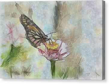 Chinese Butterfly Canvas Print by Trish Tritz