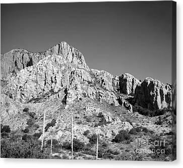 Chisos Mountain Detail Canvas Print