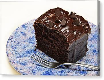 Chocolate Chip Cake Canvas Print