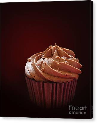 Chocolate Cupcake Isolated Canvas Print by Jane Rix