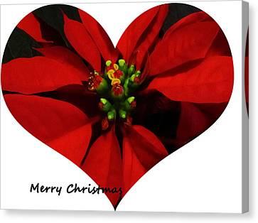 Christmas Greetings Canvas Print by Vijay Sharon Govender