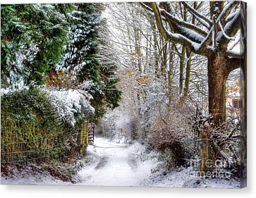 Cannock Chase Canvas Print - Christmas On The Chase by Ann Garrett
