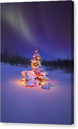 Christmas Tree Glowing Under The Canvas Print by Carson Ganci