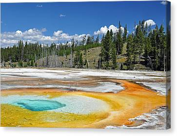 Chromatic Pool Yellowstone National Park Canvas Print by Bruce Gourley