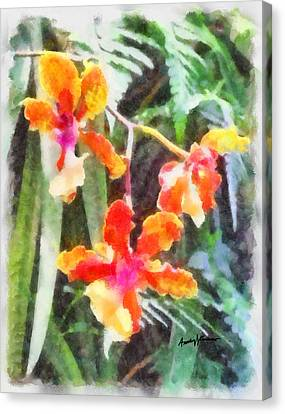 Chromaticorchids Canvas Print by Anthony Caruso