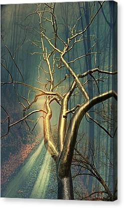 Chrome Forest Canvas Print by Marty Koch