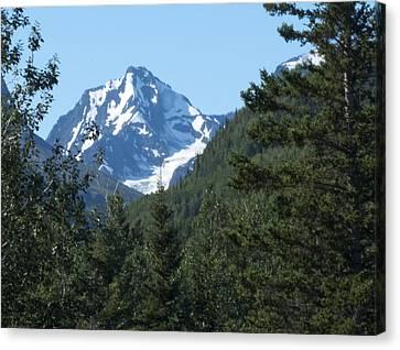 Chugach Mountain View Canvas Print by George Hawkins