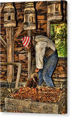 Harvest Canvas Print - Cider Making by Joann Vitali