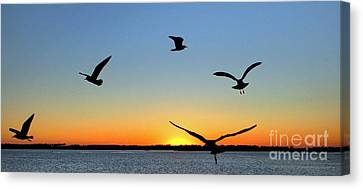 Circle Meeting At Sunrise Canvas Print by Benanne Stiens