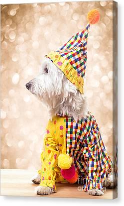 Circus Clown Dog Canvas Print by Edward Fielding