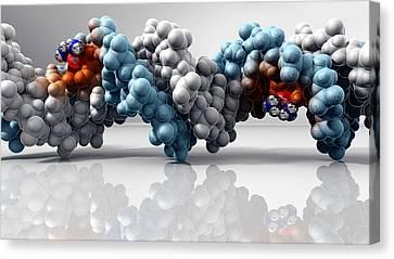 Cisplatin Cancer Drug And Dna Molecule Canvas Print by Phantatomix