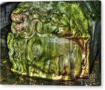 Cistern Medusa Canvas Print by Michael Garyet