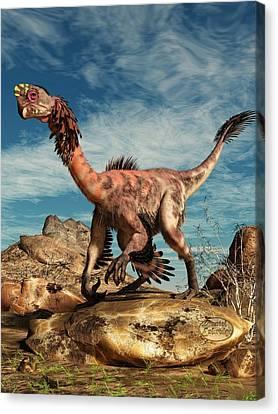 Citipati In The Desert Canvas Print by Daniel Eskridge