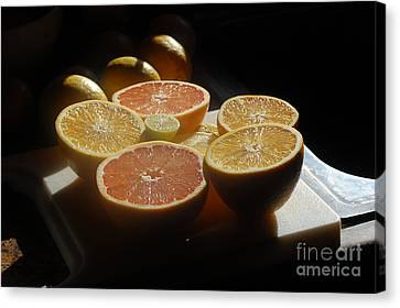 Citrus I Canvas Print