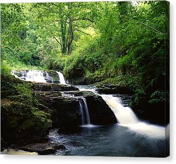 Co. Clare Canvas Print - Clare Glens, Co Limerick, Ireland Irish by The Irish Image Collection