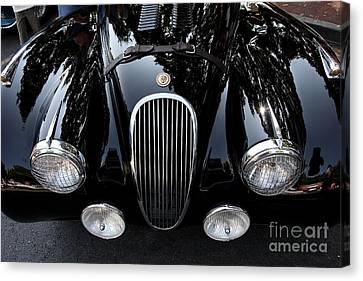 Classic Black Jaguar . 40d9322 Canvas Print by Wingsdomain Art and Photography