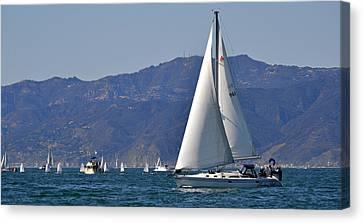 Clear Sailings Canvas Print