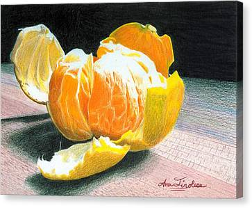 Canvas Print featuring the painting Clementine by Ana Tirolese