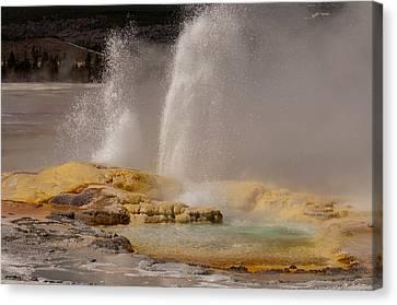 Clepsydra Geyser Yellowstone National Park Canvas Print by Bruce Gourley