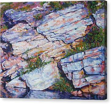 Cliff At Montlake Canvas Print