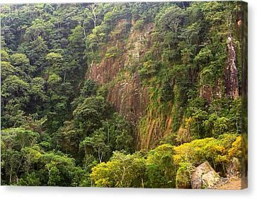 Cliff Side At Culebra Cut 2 Canvas Print by Linda Phelps