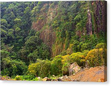 Cliff Side Of Culebra Cut Canvas Print by Linda Phelps
