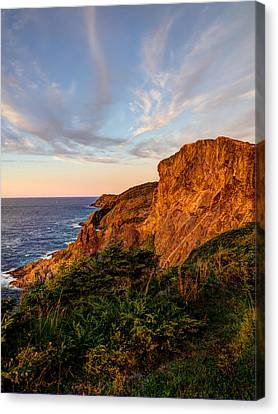 Cliffs Of White Bay Canvas Print by Stan Wojtaszek