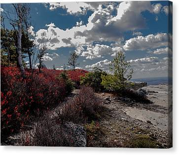 Clifftop Splendor Canvas Print by Jim DeLillo