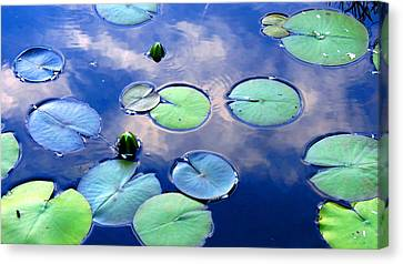 Closing Lilies Canvas Print by Catherine Natalia  Roche
