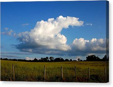 Cloud Canvas Print by Beverly Hammond