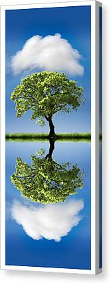 Cloud Cover Reflection Canvas Print by Mal Bray