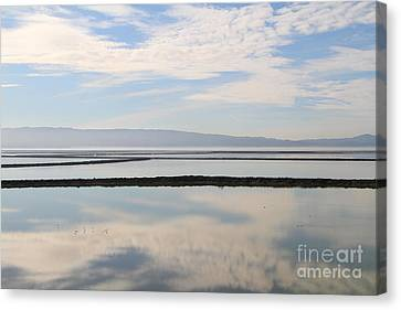 Cloud Reflections On Salt Marsh At Coyote Hills Regional Preserve California . 7d10968 Canvas Print by Wingsdomain Art and Photography