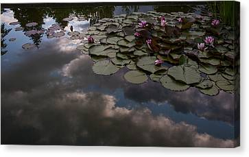 Clouded Pond Canvas Print by Mike Reid
