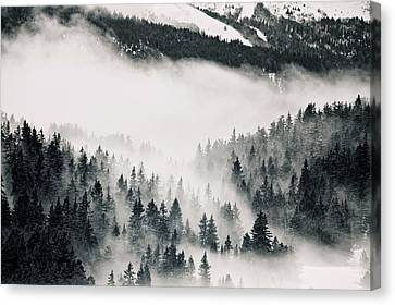 Clouds Moving Through Forest In French Alps Canvas Print by Philipp Klinger