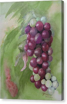 Cluster Of Grapes Canvas Print by JoAnne Hessong