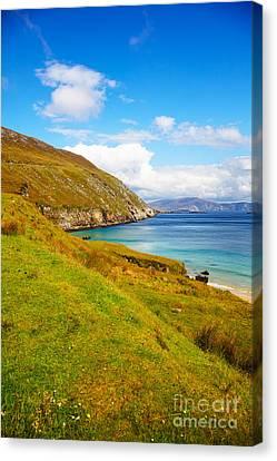Coast At Keem Bay On Achill Island Canvas Print by Gabriela Insuratelu
