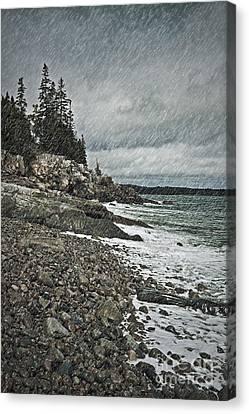 Coastal Gail Canvas Print by John Greim