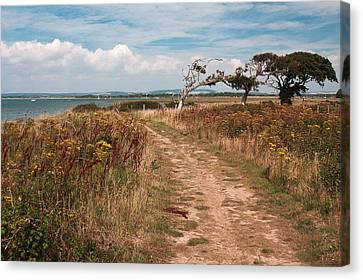 Canvas Print featuring the photograph Coastal Path by Shirley Mitchell
