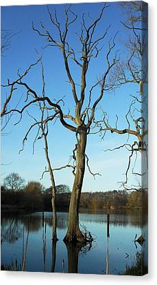 Coate1 Canvas Print by Michael Standen Smith