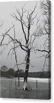 Coate2 Canvas Print by Michael Standen Smith