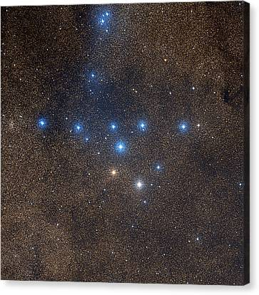 Coathanger Star Cluster Canvas Print by Celestial Image Co.