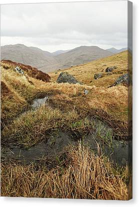 Cobbler Canvas Print by Michael Standen Smith