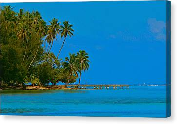 Canvas Print featuring the photograph Coconuts Anyone by Eric Tressler