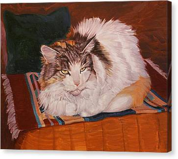 Cody Is Just Chillin Canvas Print by Shawn Shea