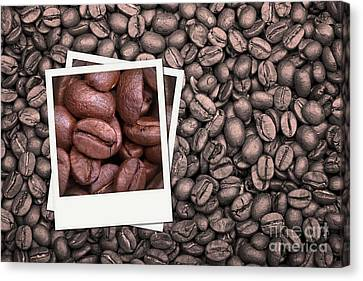 Coffee Beans Polaroid Canvas Print by Jane Rix